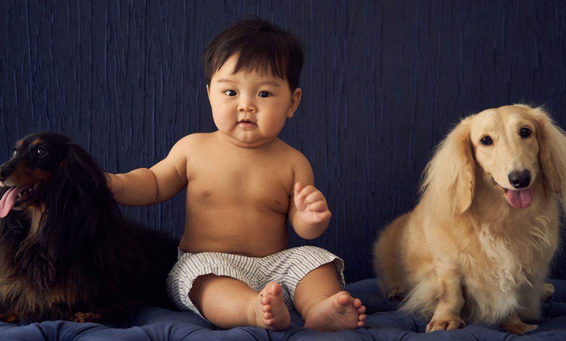 Family Pet Photography Photo Shoot